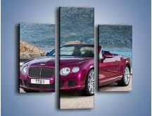 Obraz na płótnie – Bentley Continental Speed GT – trzyczęściowy TM187W3