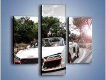 Obraz na płótnie – Audi R8 V10 Spyder – trzyczęściowy TM209W3