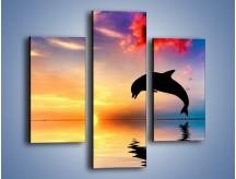 Obraz na płótnie – Delfin i jego odbicie – trzyczęściowy Z268W3