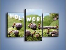 Obraz na płótnie – Ciężka praca mrówek – trzyczęściowy Z308W3