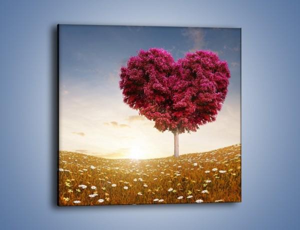 Obraz na płótnie – Drzewo pełne miłości – jednoczęściowy kwadratowy GR537