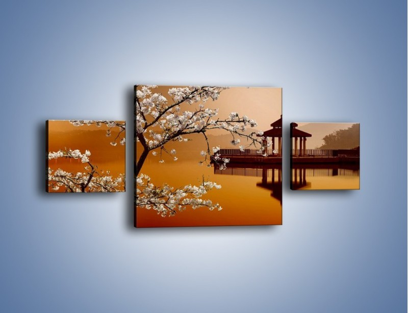 Obraz na płótnie – Kwiaty na tle Sun Moon Lake – trzyczęściowy AM301W4