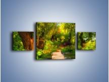 Obraz na płótnie – Drewniana kładka przez las – trzyczęściowy GR007W4