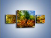 Obraz na płótnie – Drzewa w wodnym lustrze – trzyczęściowy GR010W4