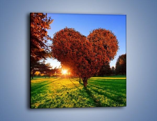 Obraz na płótnie – Miłość w parku – jednoczęściowy kwadratowy GR560