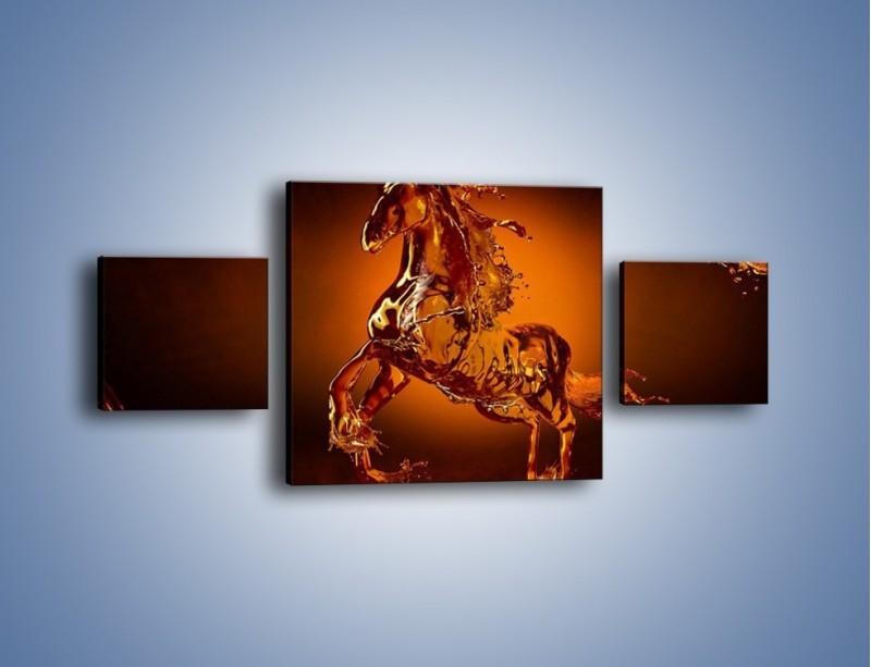 Obraz na płótnie – Wodny koń w mocnym świetle – trzyczęściowy GR228W4