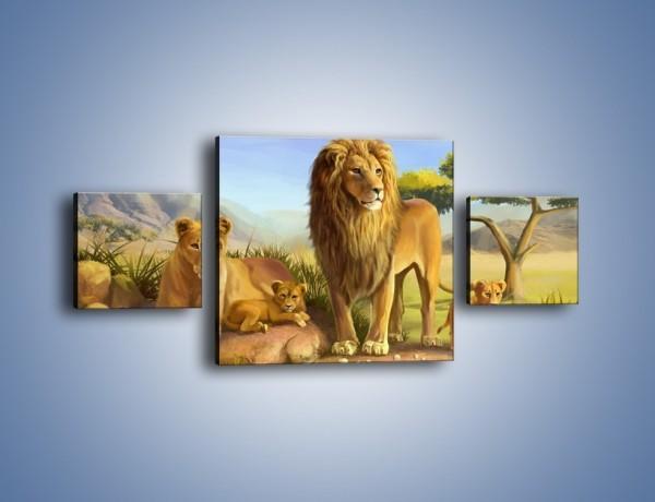 Obraz na płótnie – Lwia rodzina w komplecie – trzyczęściowy GR230W4