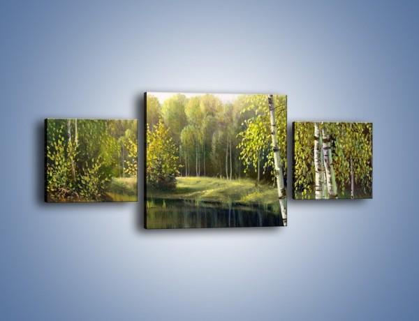 Obraz na płótnie – Tradycyjny leśny widok – trzyczęściowy GR285W4