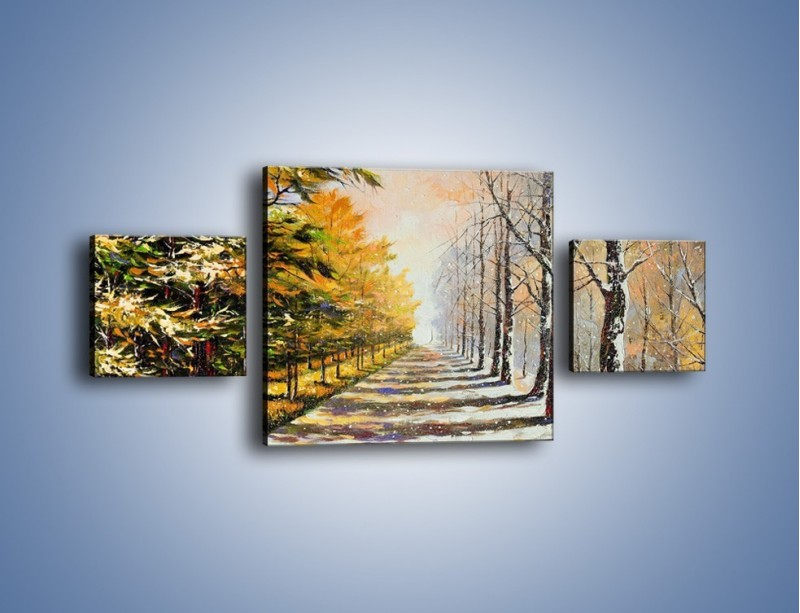 Obraz na płótnie – Trochę jesieni trochę zimy – trzyczęściowy GR292W4