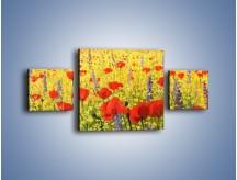 Obraz na płótnie – Cała łąka maków – trzyczęściowy GR480W4
