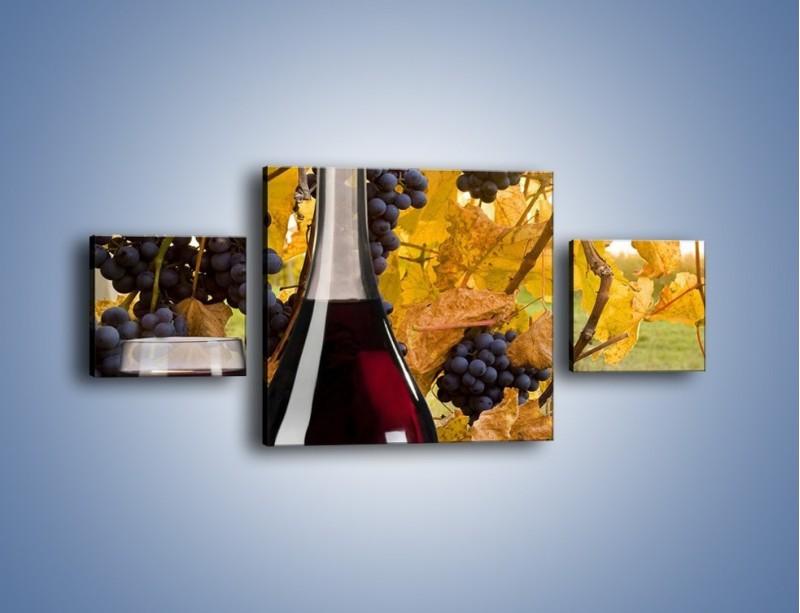 Obraz na płótnie – Wino wśród winogron – trzyczęściowy JN007W4