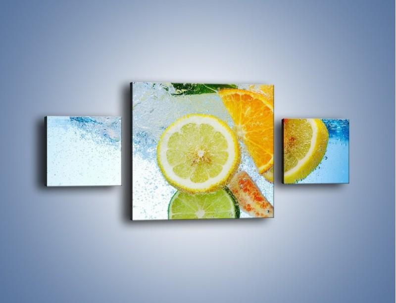 Obraz na płótnie – Zatopione plastry owoców – trzyczęściowy JN057W4