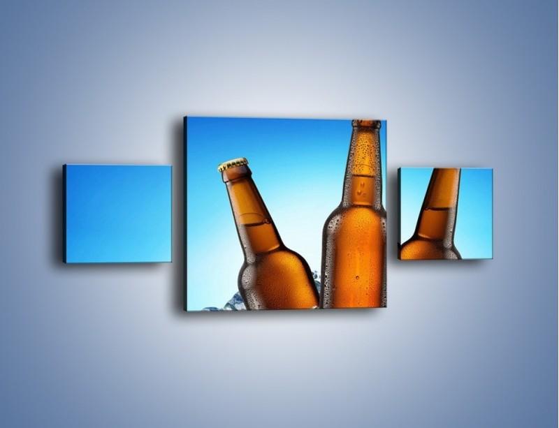 Obraz na płótnie – Szron na butelkach piwa – trzyczęściowy JN075W4