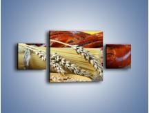 Obraz na płótnie – Chleb pszenno-kukurydziany – trzyczęściowy JN090W4