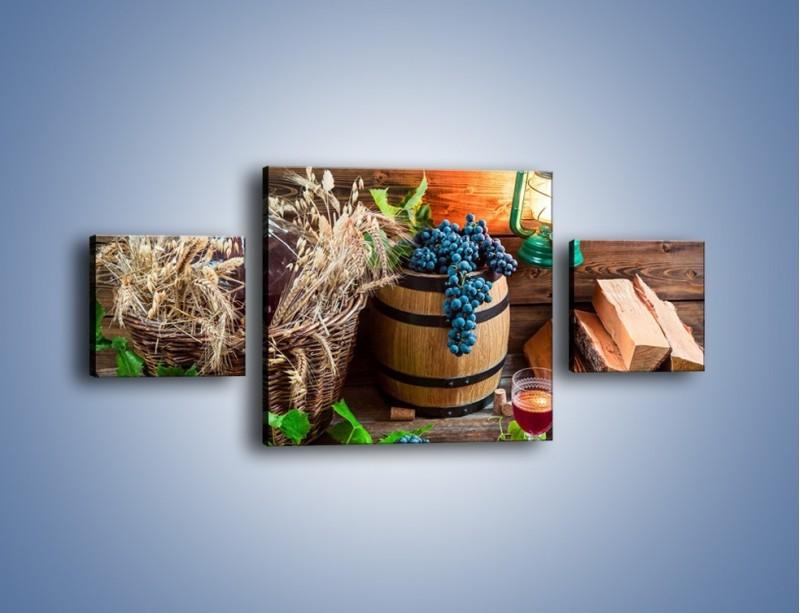 Obraz na płótnie – Wino według własnego przepisu – trzyczęściowy JN202W4