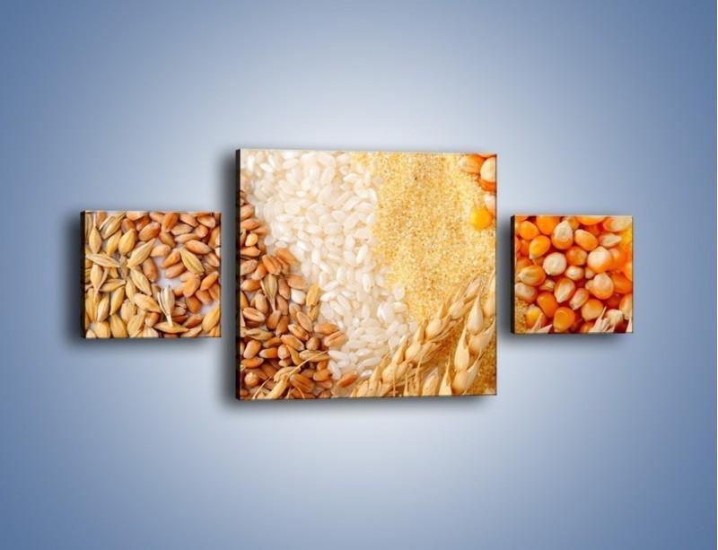 Obraz na płótnie – Ziarna pszenno-zbożowe – trzyczęściowy JN207W4