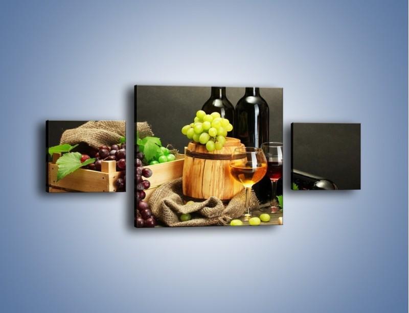 Obraz na płótnie – Wytrawne smaki wina – trzyczęściowy JN289W4