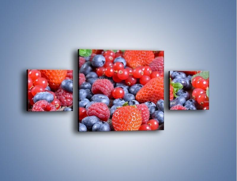 Obraz na płótnie – Owoce z działki – trzyczęściowy JN422W4