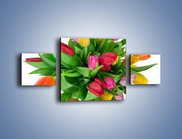 Obraz na płótnie – Wiązanka kolorowych tulipanów – trzyczęściowy K019W4