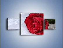 Obraz na płótnie – Bordowa róża na białej pościeli – trzyczęściowy K1023W4