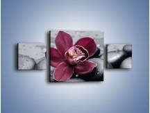Obraz na płótnie – Bordowy storczyk i ciemne towarzystwo – trzyczęściowy K156W4