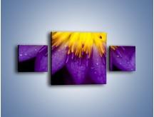 Obraz na płótnie – Baśniowy kwiat z tajemnicą – trzyczęściowy K189W4