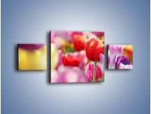 Obraz na płótnie – Boso przez tulipany – trzyczęściowy K344W4