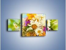 Obraz na płótnie – Bukiecik dla małej ogrodniczki – trzyczęściowy K369W4