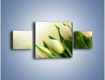 Obraz na płótnie – Białe tulipany na zgodę – trzyczęściowy K400W4