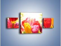 Obraz na płótnie – Bajecznie słoneczne tulipany – trzyczęściowy K428W4