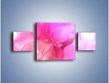 Obraz na płótnie – Budzący dzień w różowym kwiecie – trzyczęściowy K487W4