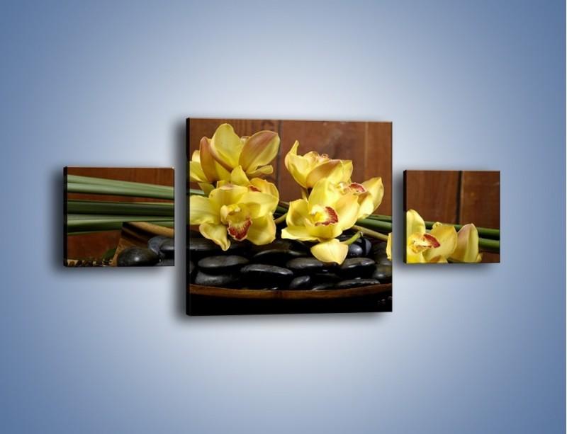 Obraz na płótnie – Kwiaty na drewnianym naczyniu – trzyczęściowy K575W4