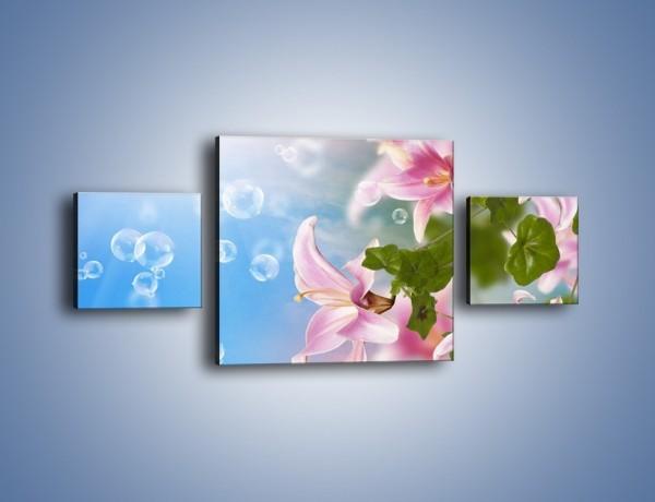 Obraz na płótnie – Mydlane bańki nad kwiatami – trzyczęściowy K669W4