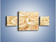 Obraz na płótnie – Bukiet herbacianych róż – trzyczęściowy K710W4