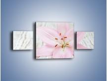 Obraz na płótnie – Cała słodycz w lilii – trzyczęściowy K727W4