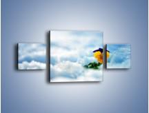 Obraz na płótnie – Bratek na śnieżnym niebie – trzyczęściowy K744W4