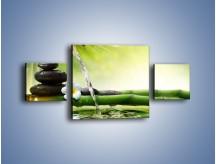 Obraz na płótnie – Bambus i źródło wody – trzyczęściowy K930W4