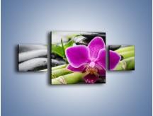 Obraz na płótnie – Bambusowe dodatki z przodu – trzyczęściowy K954W4
