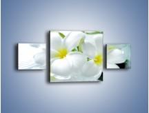 Obraz na płótnie – Białe kwiaty w potoku – trzyczęściowy K991W4