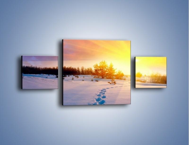 Obraz na płótnie – Ślady na śnieżnym puchu – trzyczęściowy KN1015W4