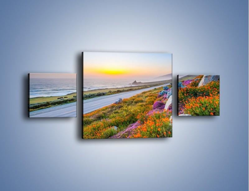Obraz na płótnie – Kolory wiosny w kwiatach – trzyczęściowy KN1062W4