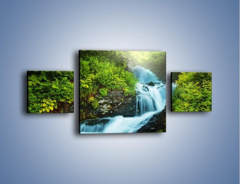 Obraz na płótnie – Spływ wodny i zieleń – trzyczęściowy KN1069W4