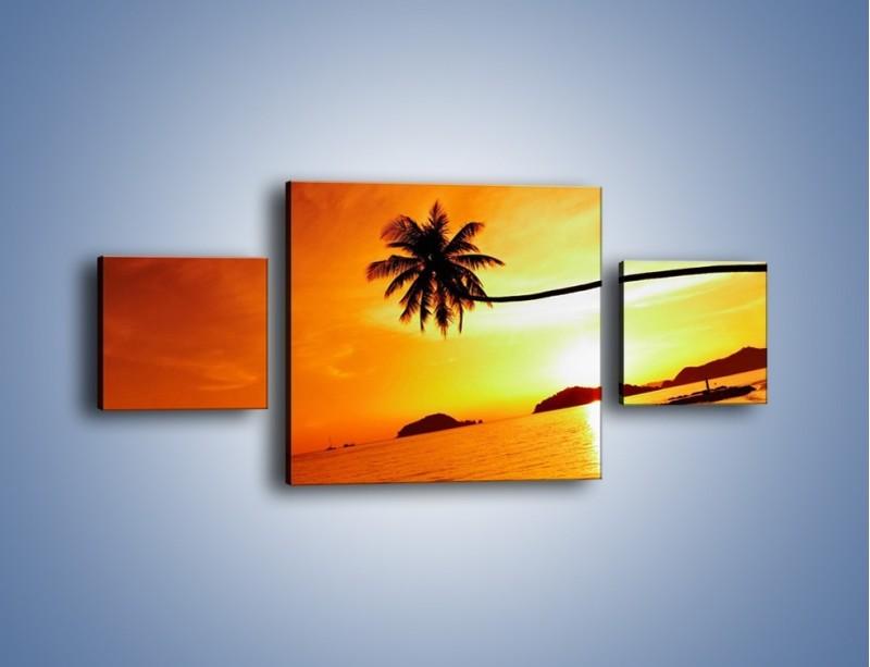 Obraz na płótnie – Palma o zachodzie słońca – trzyczęściowy KN1077W4
