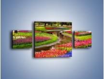 Obraz na płótnie – Aleje kolorowych tulipanów – trzyczęściowy KN1079W4