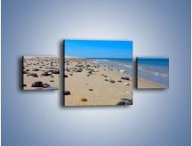 Obraz na płótnie – Całe morze kamyczków – trzyczęściowy KN1086AW4