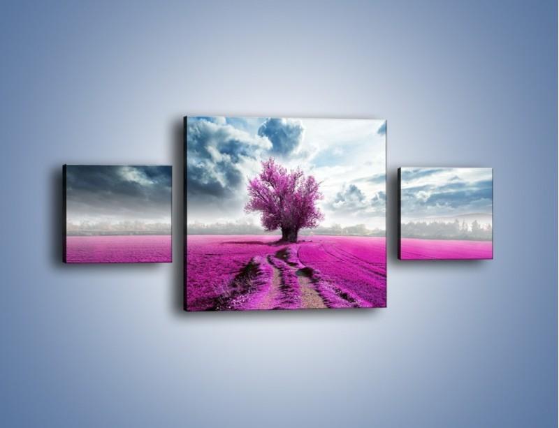 Obraz na płótnie – Lawendowe drzewo – trzyczęściowy KN1093W4