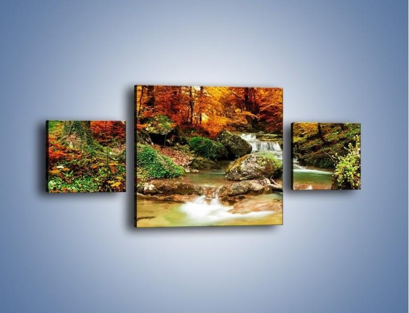 Obraz na płótnie – Jesienne kolory w lesie – trzyczęściowy KN1094AW4