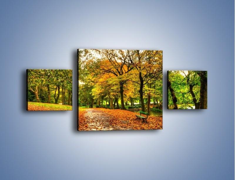 Obraz na płótnie – Piękna jesień w parku – trzyczęściowy KN1098AW4