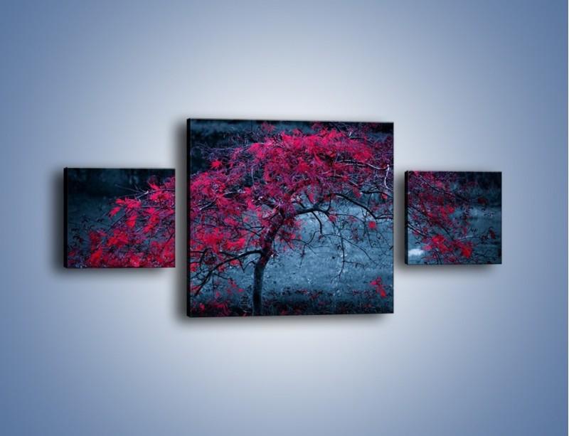 Obraz na płótnie – Czerwone płaczące drzewo – trzyczęściowy KN1101AW4