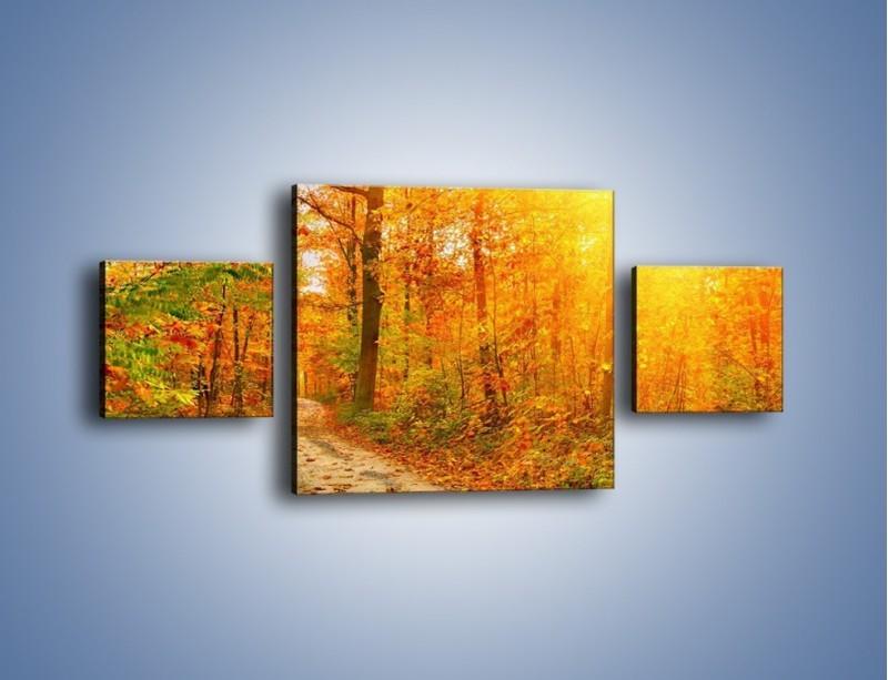 Obraz na płótnie – Leśną drużką jesienią – trzyczęściowy KN1163AW4